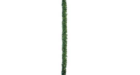 Tannenranke, grün, dicht (Typ GG18)